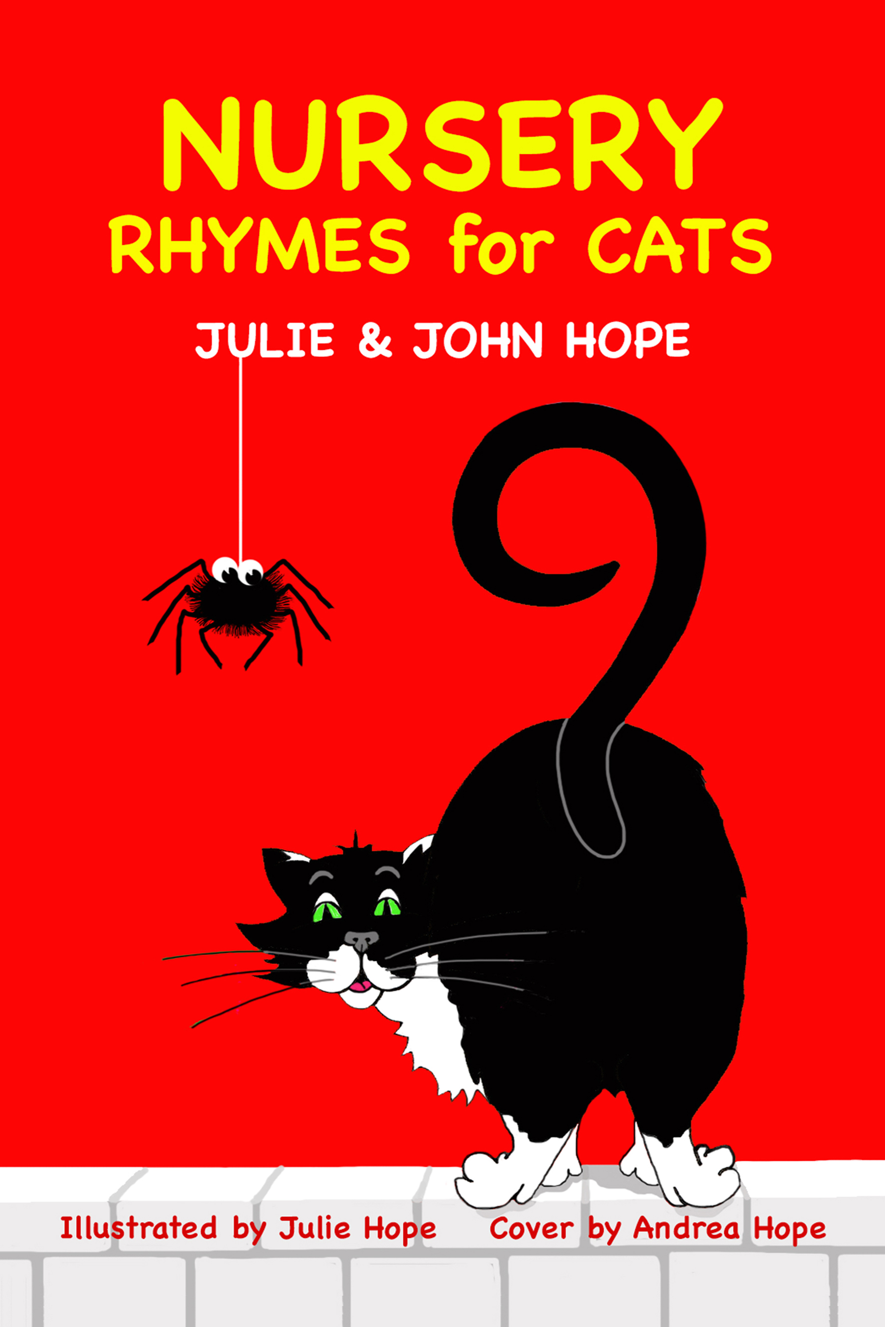 Nursery Rhymes for Cats front cover, by John and Juie Hope