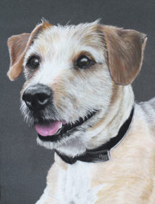 gifts for dog lovers pet portrait