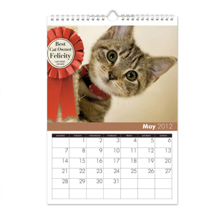 Personalised cat themed calendar