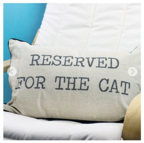 reserved-for-cat-cat-themed-christmas-gift
